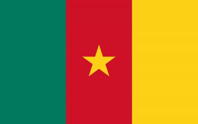 Kamerunin lippu