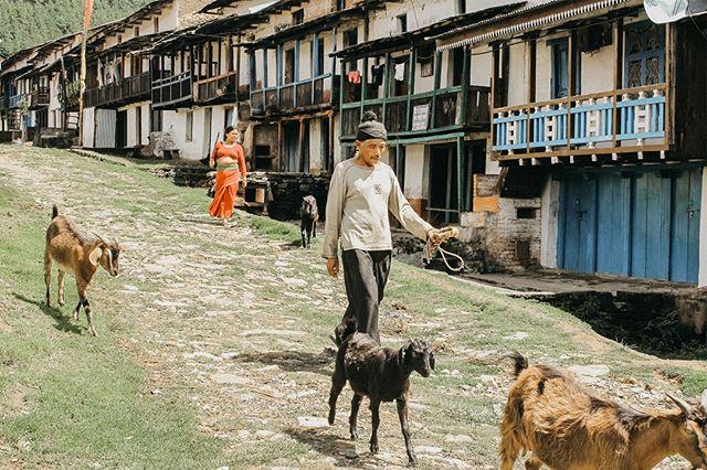 World Watch List 2020 sijalla 32: Nepal