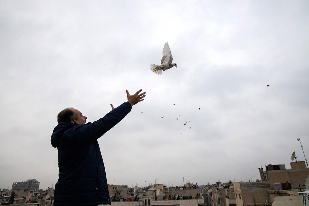 Pastori George vapauttaa kyyhkyn lentoon