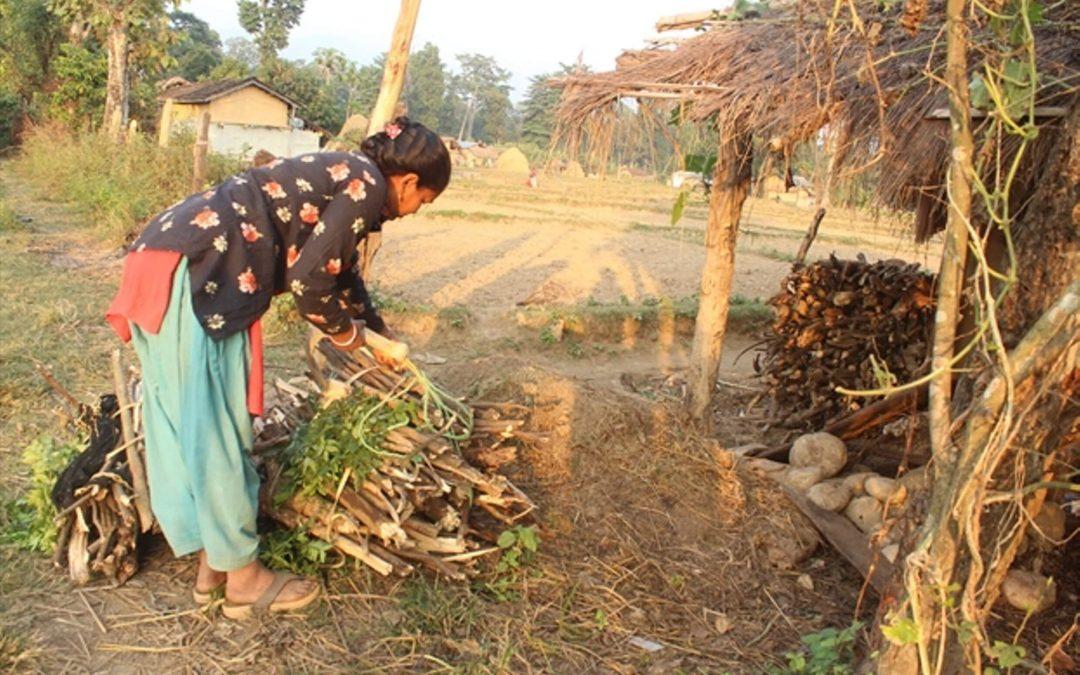 Vastaus hellittämättömään rukoukseen – Bhumikan perhe selviytyy vainojen keskellä Nepalissa
