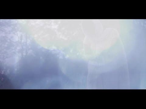 Video: Toivon keskus, raunioiden keskellä